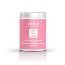 Обесцвечивающий порошок Color Creats, Tefia